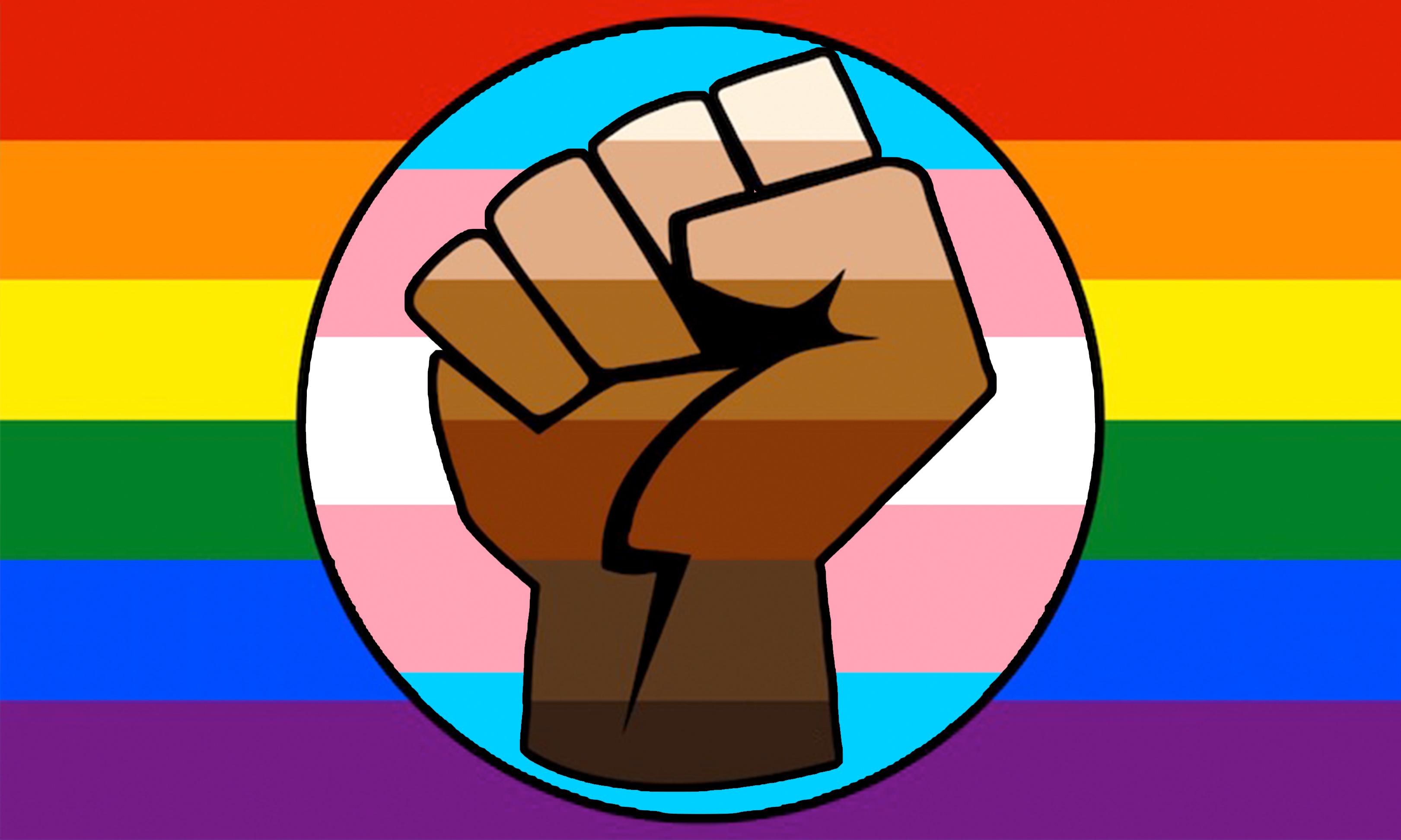 A custom rainbow flag with a fist on it.